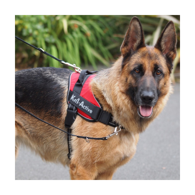 Harnais d'éducation Kn'1 Active Speed Control pour chien