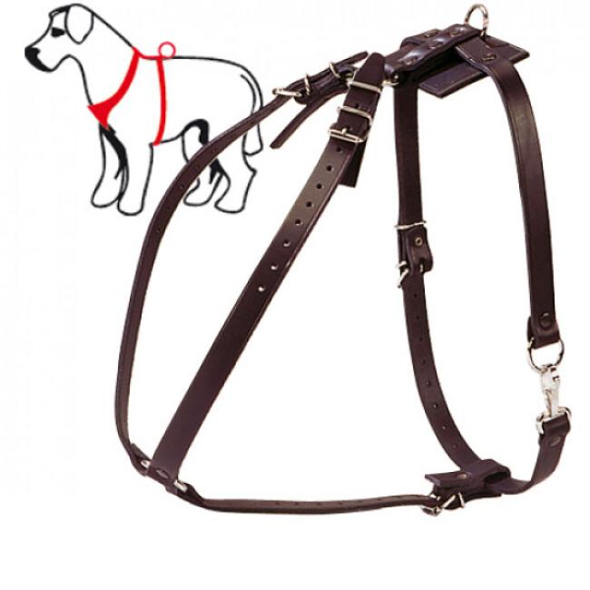 Harnais de pistage classique pour chien