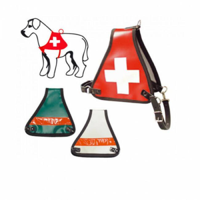 Harnais d'identification pour chien