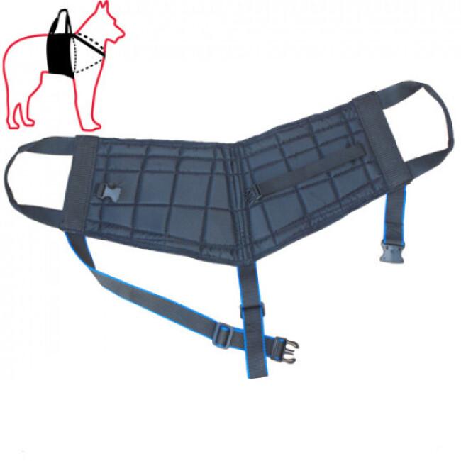 Harnais Handidog™ d'antérieur pour chien à mobilité réduite ou handicapé
