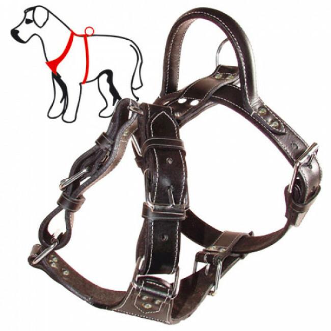 Harnais plastron à poignée pour chien
