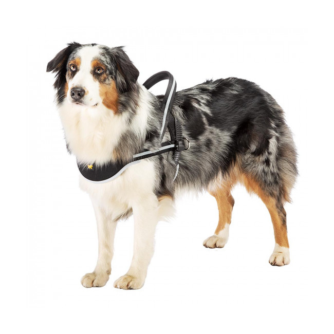 Harnais pour chien Ergocomfort Nordic Ferplast