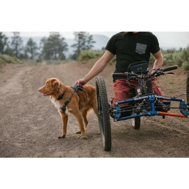 Harnais léger pour chien Flagline™ Ruffwear