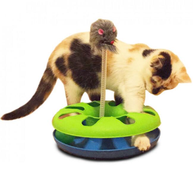 Jeu Cat Track pour chat