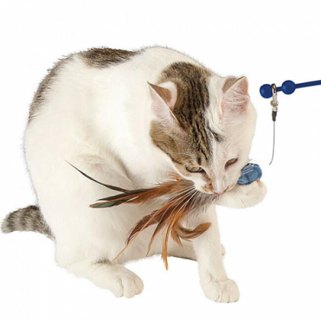 Jeu éducatif pour chat Raptor