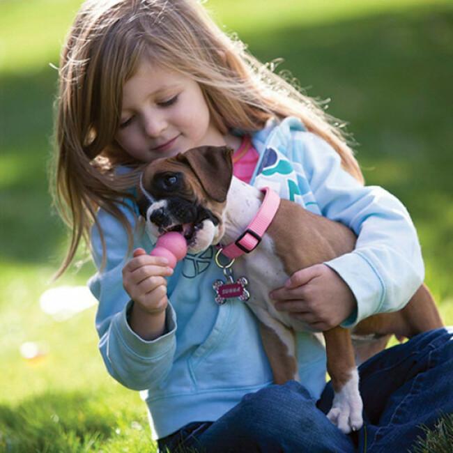 Jouet KONG Puppy à mâcher pour chiot