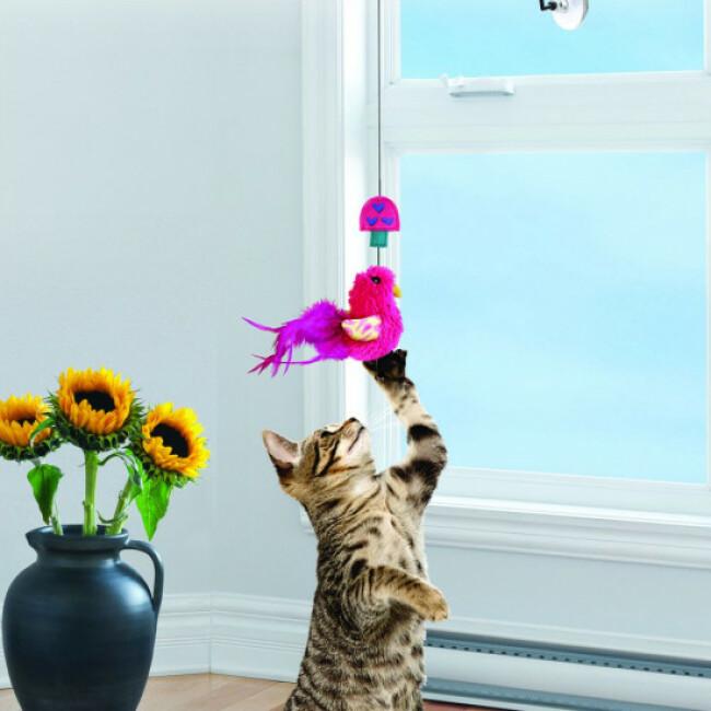 Jouet à suspendre avec plumes et herbe à chat KONG Window Teaser