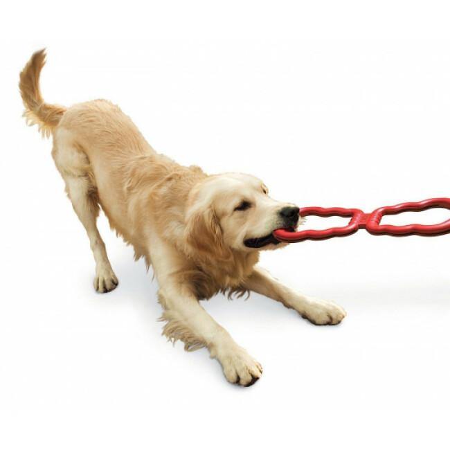 Jouet à tirer pour chien Tug Toy KONG