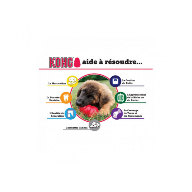 Jouet avec squeaker KONG Wiggi  pour chien