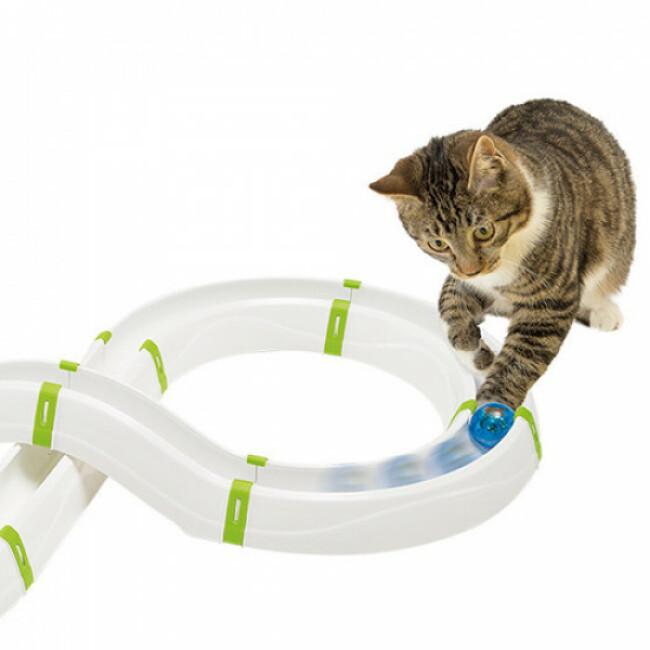 Jouet circuit pour chat Typhon