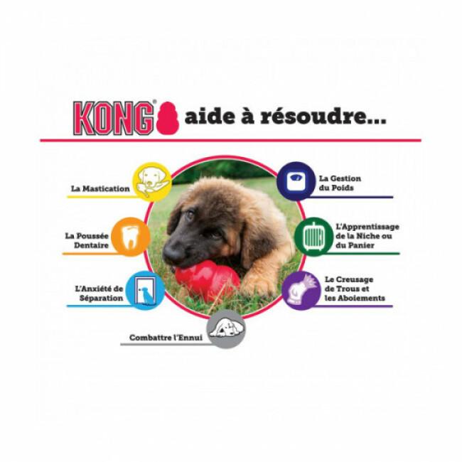 Jouet couineur extensible en tissu pour chien KONG Squiggles
