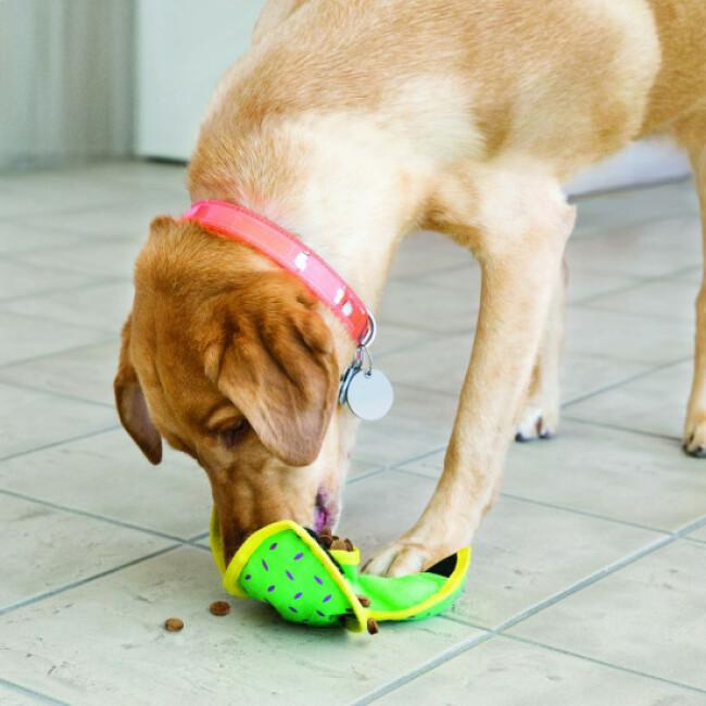 Jouet en toile résistant à garnir pour chien KONG Ballistic