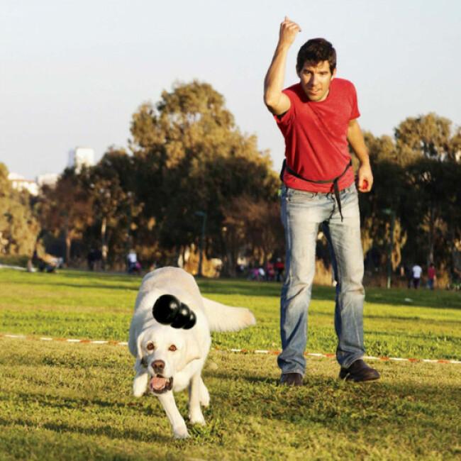 Jouet KONG Extrême noir résistant pour chien