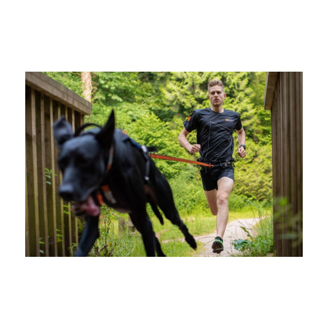 Laisse amortissante pour sports canins Bungee Leash NON-STOP Dogwear