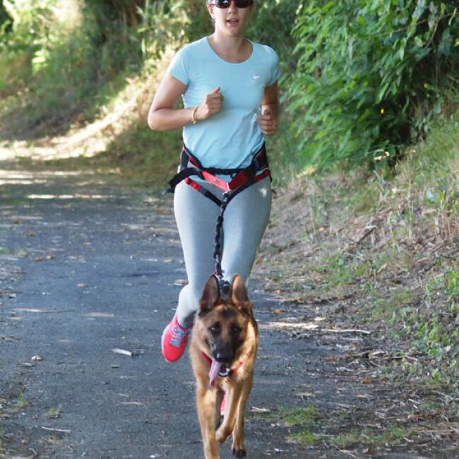 Laisse canicross Kn'1 Pullfoot™ pour chien de moyenne et grande taille