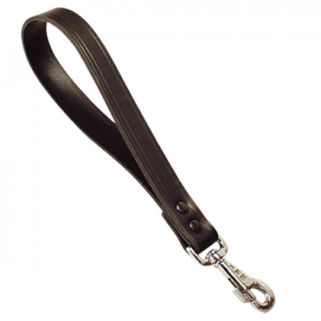 Laisse cuir courte et rivetée pour chien