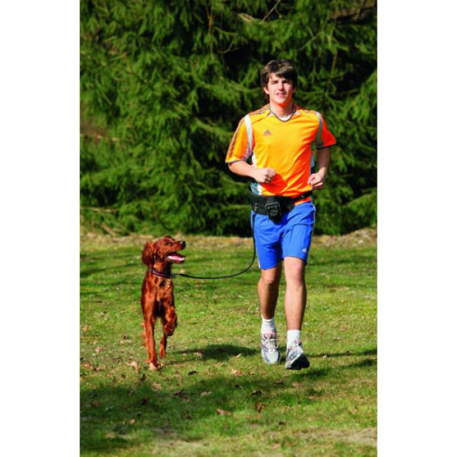Laisse de jogging pour chien canicross Flamingo