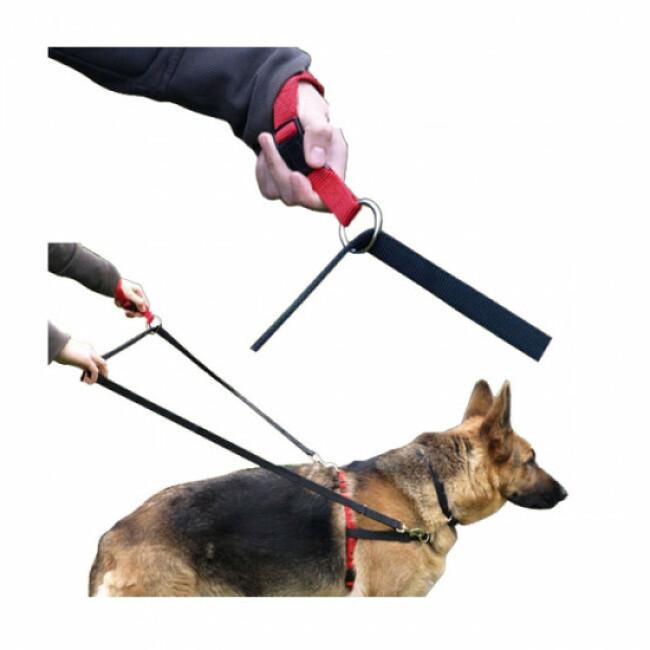 Laisse Educlip ™ éducation du chien en laisse
