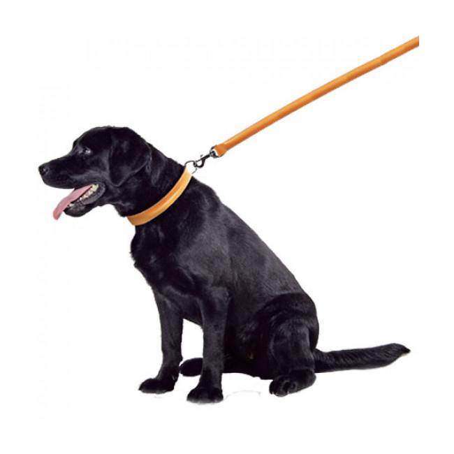 Laisse pour chien en cuir bombé