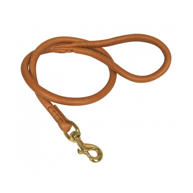 Laisse ronde en cuir avec mousqueton pour chien