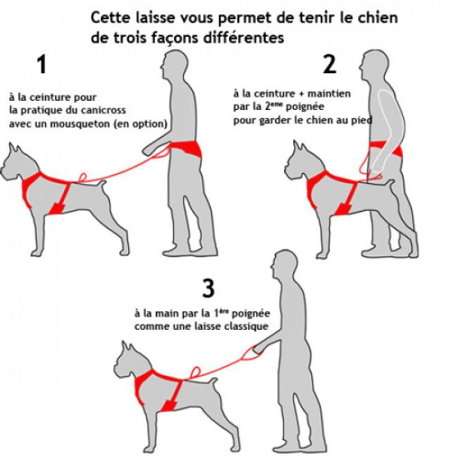 Laisse extensible amortisseur pour chien moyen ou grande taille Tubutrek™