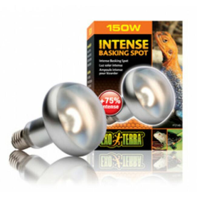 Lampe chauffante Intense Basking Spot Exo Terra
