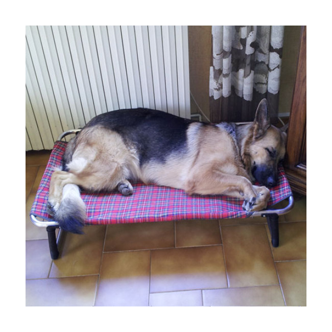 Lit pour chien Dream Bed