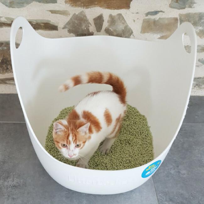 Litière écologique pour chat au tofu K-Litter