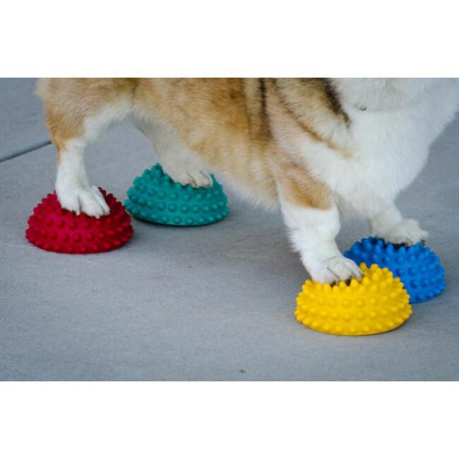 Lot de 4 plots antidérapants FitPaws pour travail de l'équilibre du chien