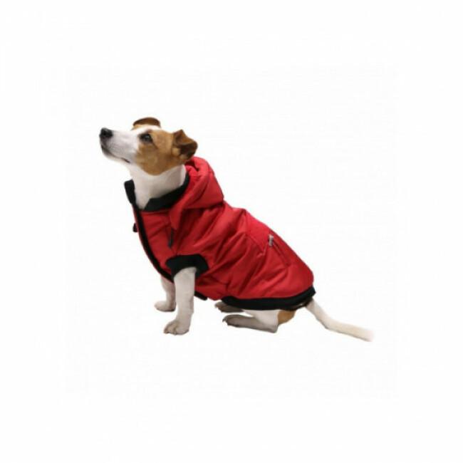 Manteau d'hiver pour chien Trixie Palermo