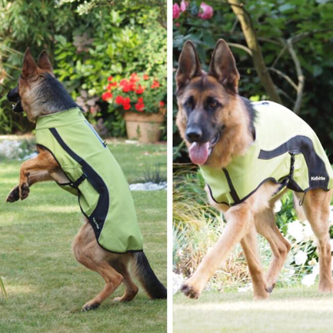 Manteau imperméable Kn'1® Active Way pour chien