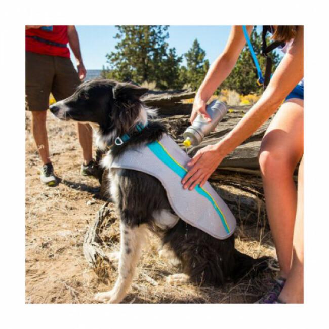 Manteau rafraichissant pour chien Swamp Cooler