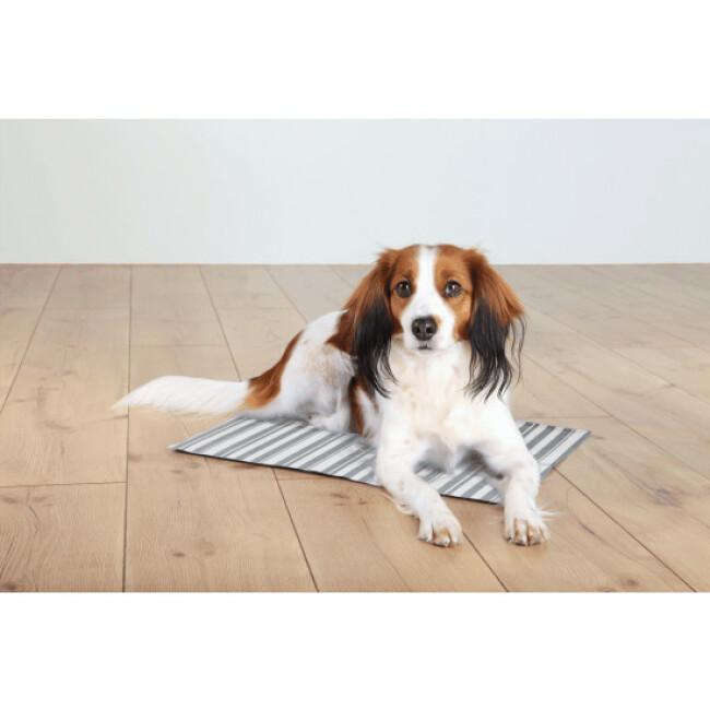 Tapis rafraîchissant blanc gris Trixie pour chien