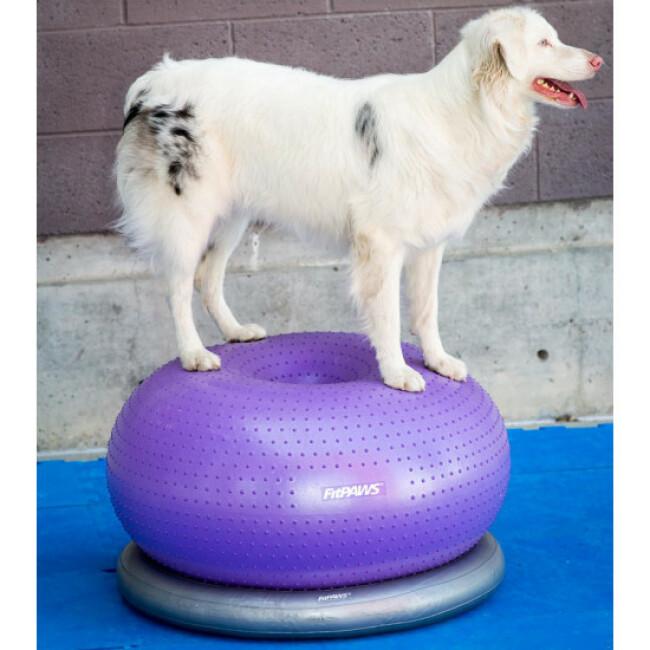 Matériel de renforcement musculaire pour chien FitPaws TRAX Donut 33 x 55 cm