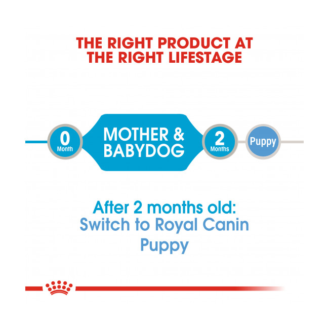 Mousse Starter Mother & Babydog Royal Canin pour chien - 12 boîtes 195 g