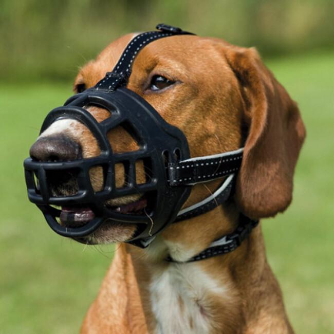 Muselière Muzzle-Flex pour chien