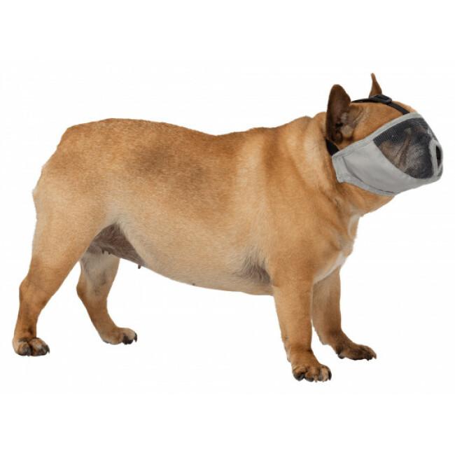 Muselière pour chiens à museau court Trixie