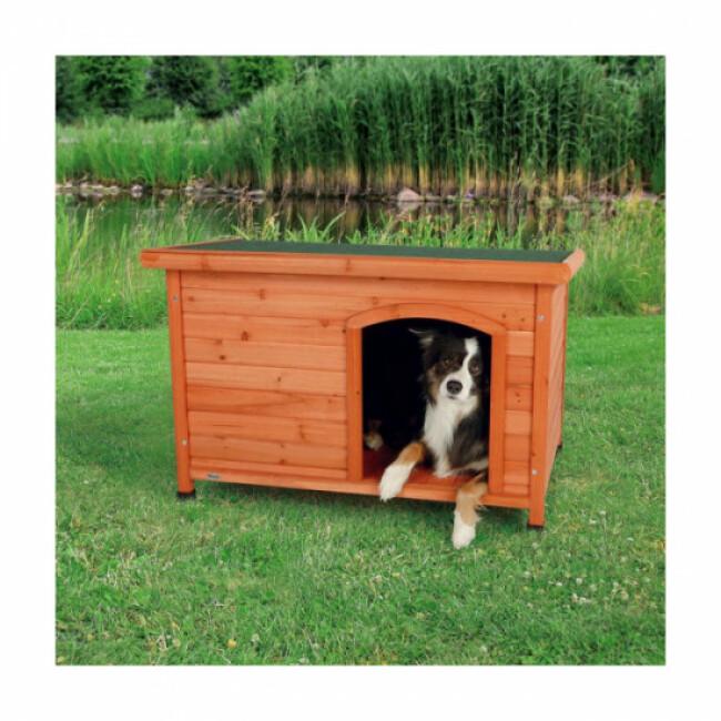 Niche pour chien en pin vernis toit plat Natura Classic