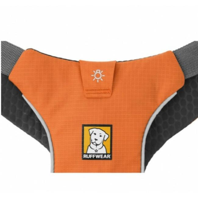 Harnais sport canin Omnijore pour canitrail / canirando Ruffwear