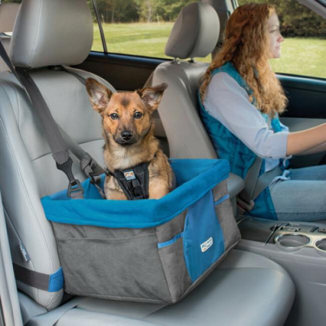 Panier pour chien suspendu adapté à la voiture Booster Seat Kurgo