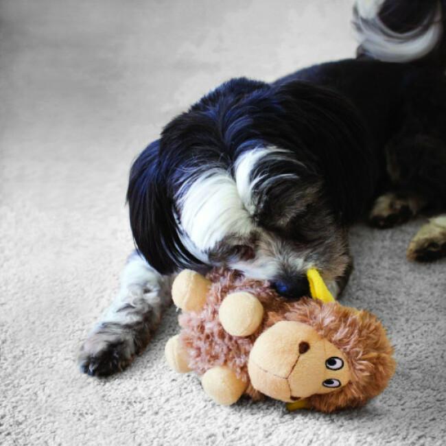 Peluche douce mouton à craquements pour chien KONG Cruncheez