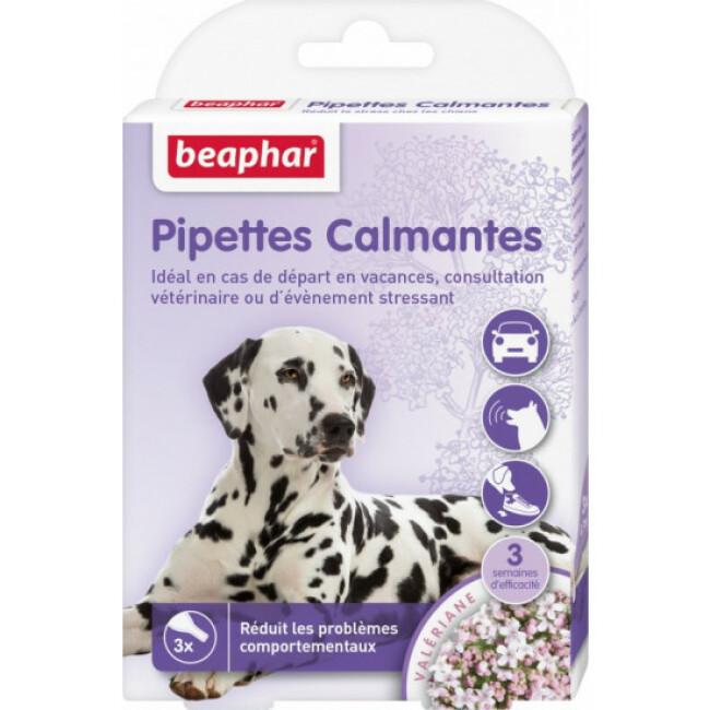 Pipettes calmantes à base de Valériane pour chien Beaphar