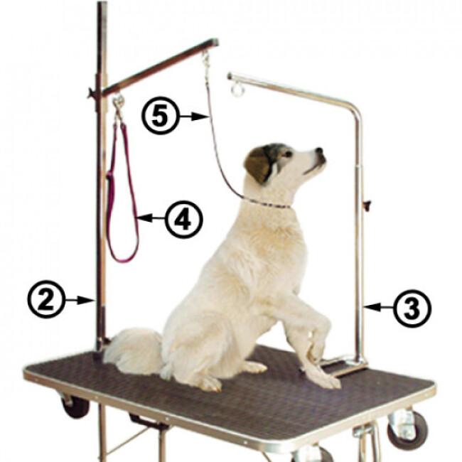 Potence pour table de toilettage animaux 1 point d'attache