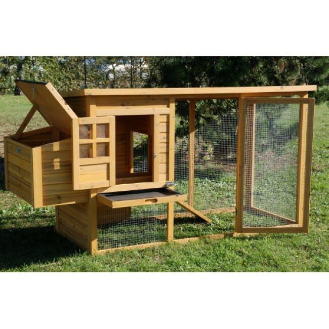 Poulailler Cottage 2 en sapin avec pondoir