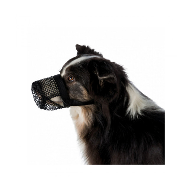 Protection anti intoxication en polyester Trixie pour chien Coloris noir