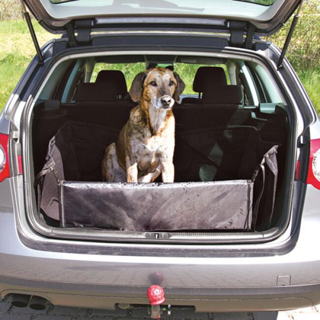 Protection de coffre automobile Bachousse™ pour chien