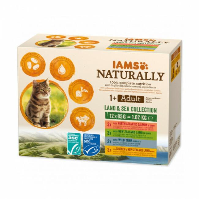 Pâtée en sauce IAMS Naturally pour chat