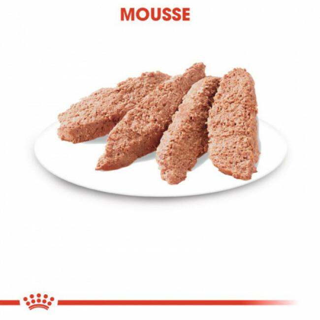 Mousses pour chat stérilisé Royal Canin - 12 Sachets 85 g
