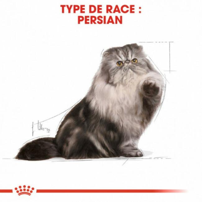 Pâtée Royal Canin Persian pour chats persan adulte 12 Sachets 85 g - Mousse