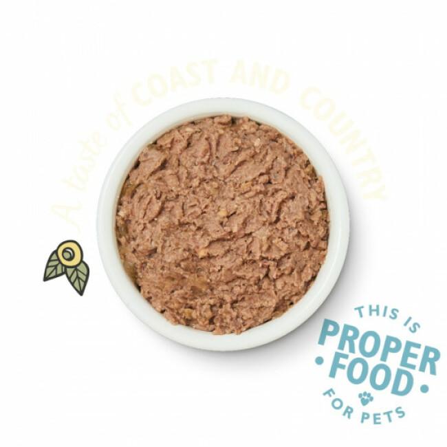 Pâtée sans céréales pour chat à la terrine de poisson Lily's Kitchen